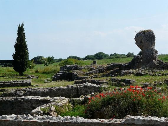 Bomen-en-bloemen-bij-ruines-Aleria