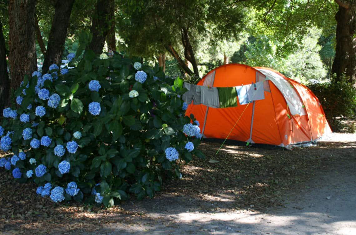 Camping-Sagone-tent