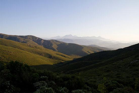Desert-des-Agriates-groene-bergen