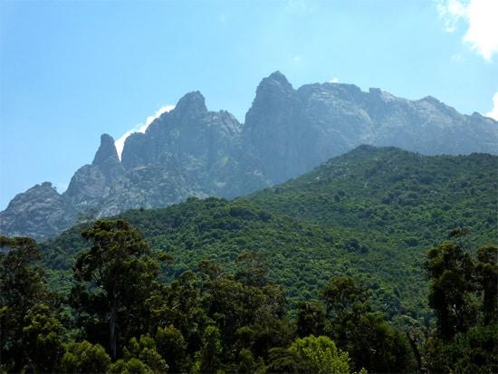 Natuurreservaat-Scandola-overzicht-bos-bergen