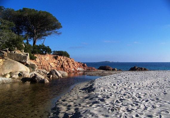 Palombaggia-bomen-water-en-rotsen