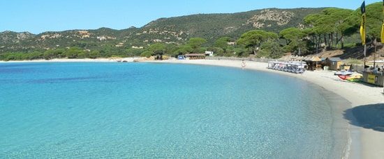 Zuid-Corsica-breed