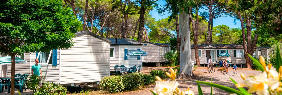 Camping-Domaine-d-Anghione-Corsica