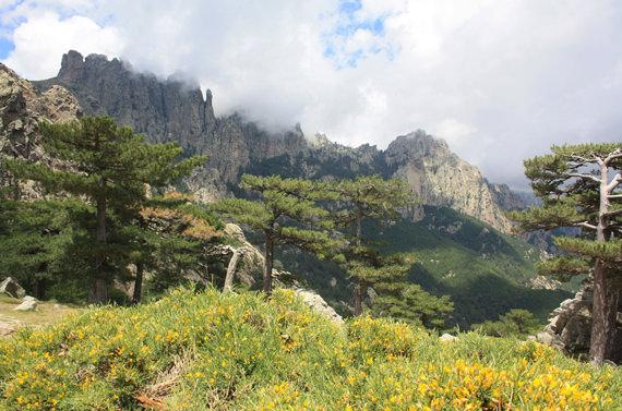 Col-de-Bavella-Zuid-Corsica