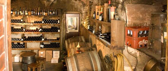 Corsicaanse-wijnen