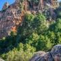 Een impressie van Corsica [video]