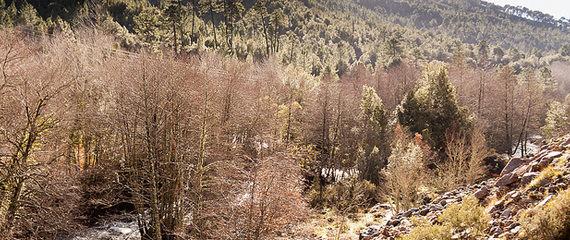 Gorges-du-Prunelli-overzicht