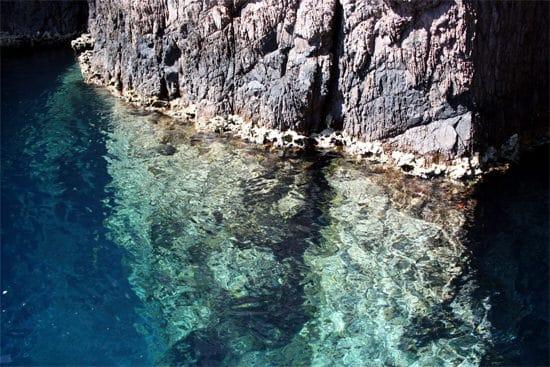 Natuurreservaat-Scandola-algen-bovenwater