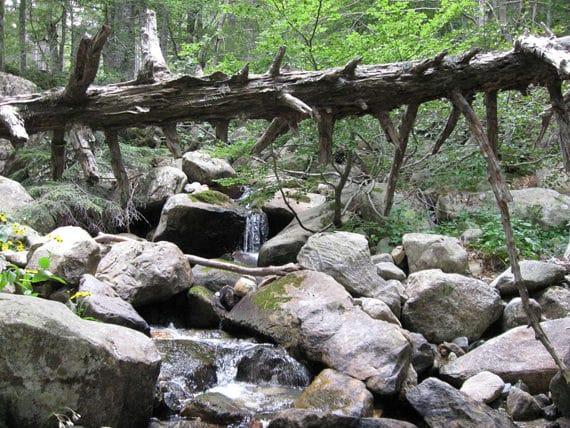 Rondreis-GR20-Zuid-op-Corsica-water-en-rotsen