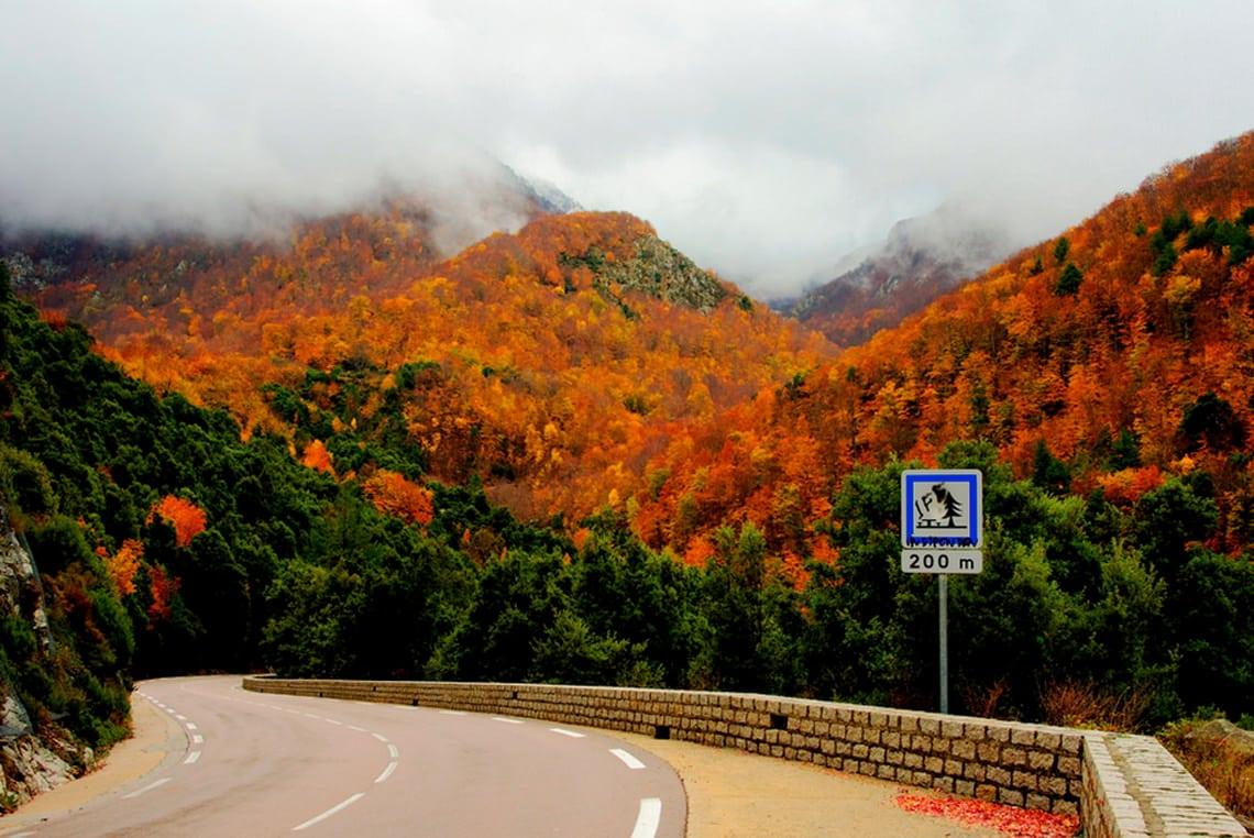 Vizzavona-Arke-8-daagse-rondreis-Bijzonder-Corsica-op-Corsica-vakantie-info